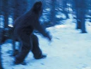 New series chronicles big bounty for Bigfoot