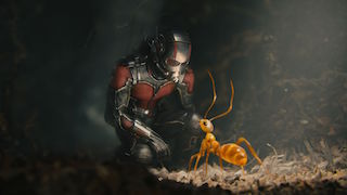 Ant-Man was one of the summer's most successful films.