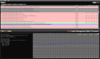Nugen Audio AMB Audio Management Batch processor
