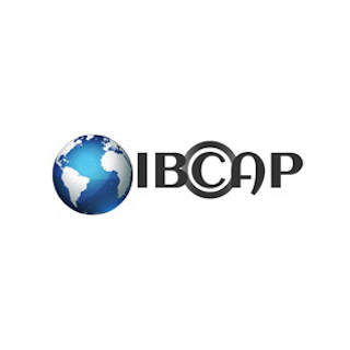 Last week, a Federal Court in Texas awarded an IBCAP member $16.8 million for willful copyright infringement, an injunction against the owner of the infringing websites, a transfer of 15 domains including freetvall.com, and an injunction extending to use of non-party service providers such as website hosts and content delivery networks.
